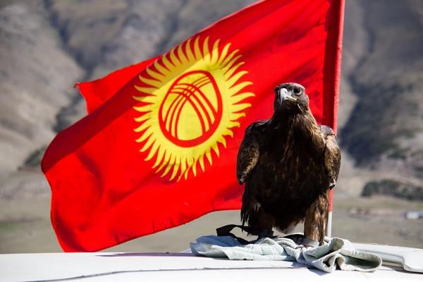 Kirgiz lobogo sassal_m